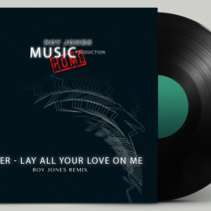 Silver - Lay all your Love on me   Roy Jones Remix
